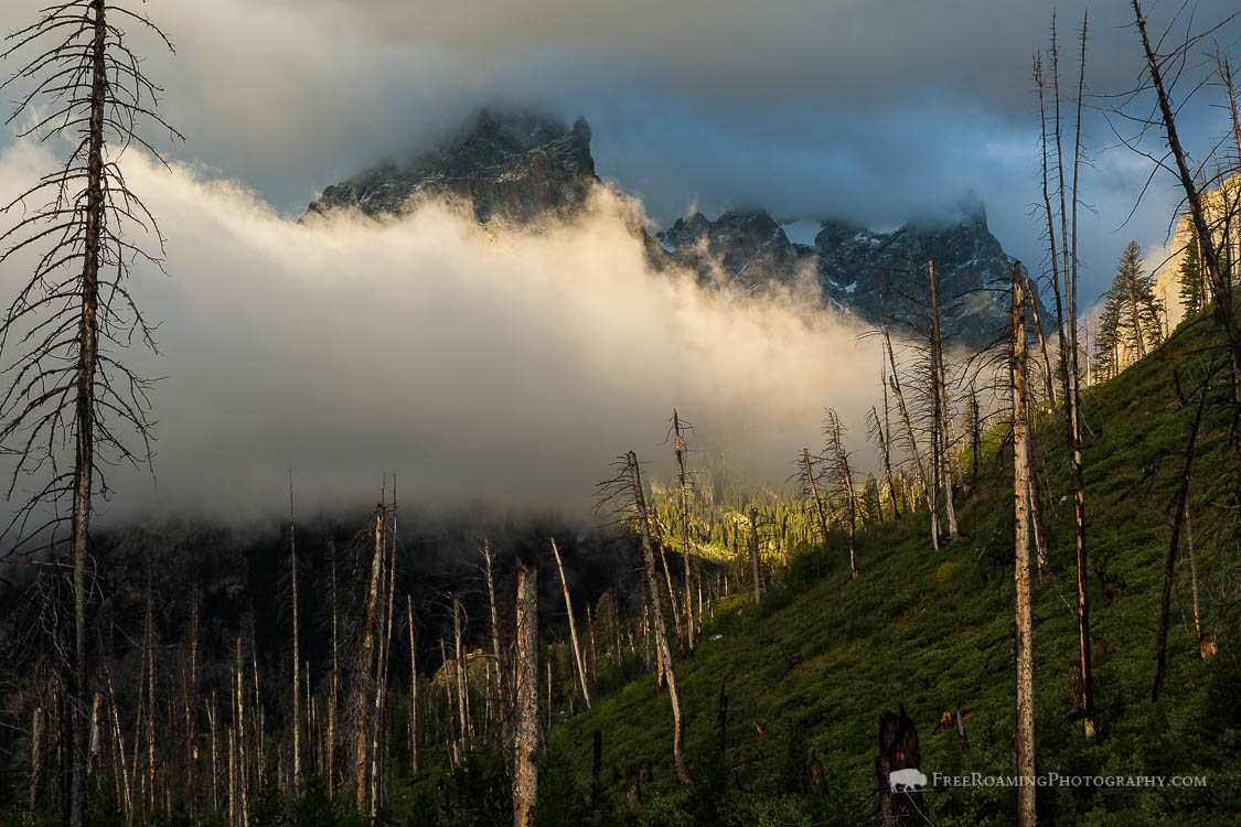 Breaking Fog on Teton Mountains