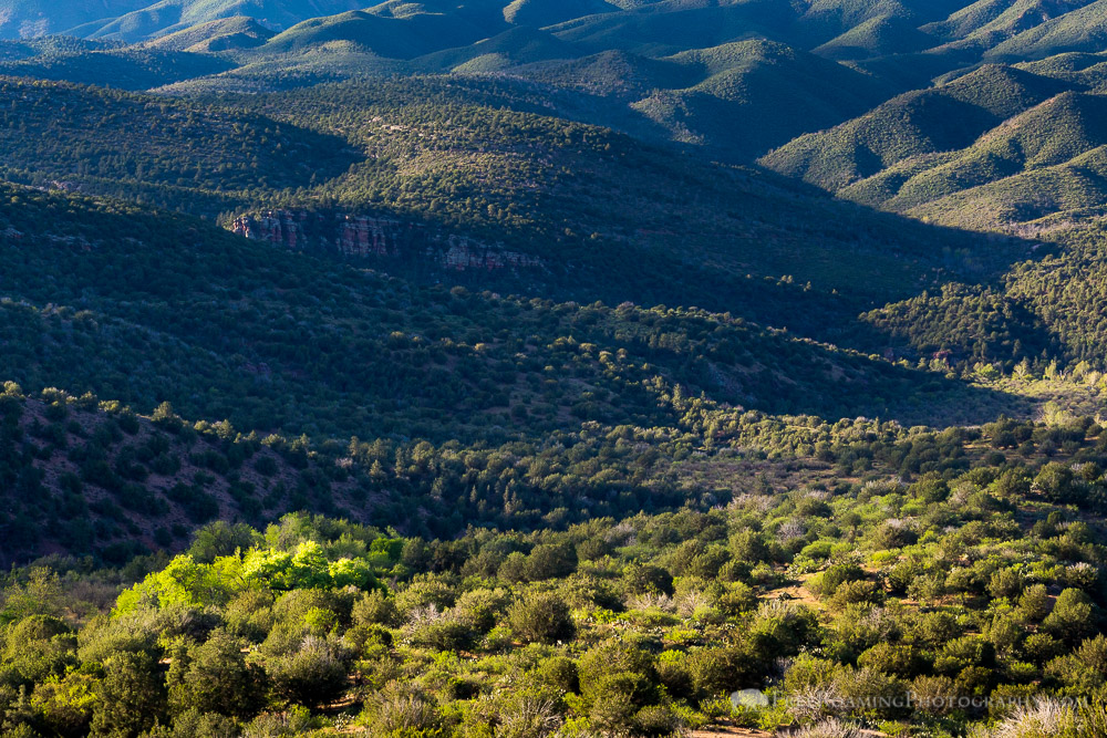 Mazatzal Mountains from Whiterock Mesa