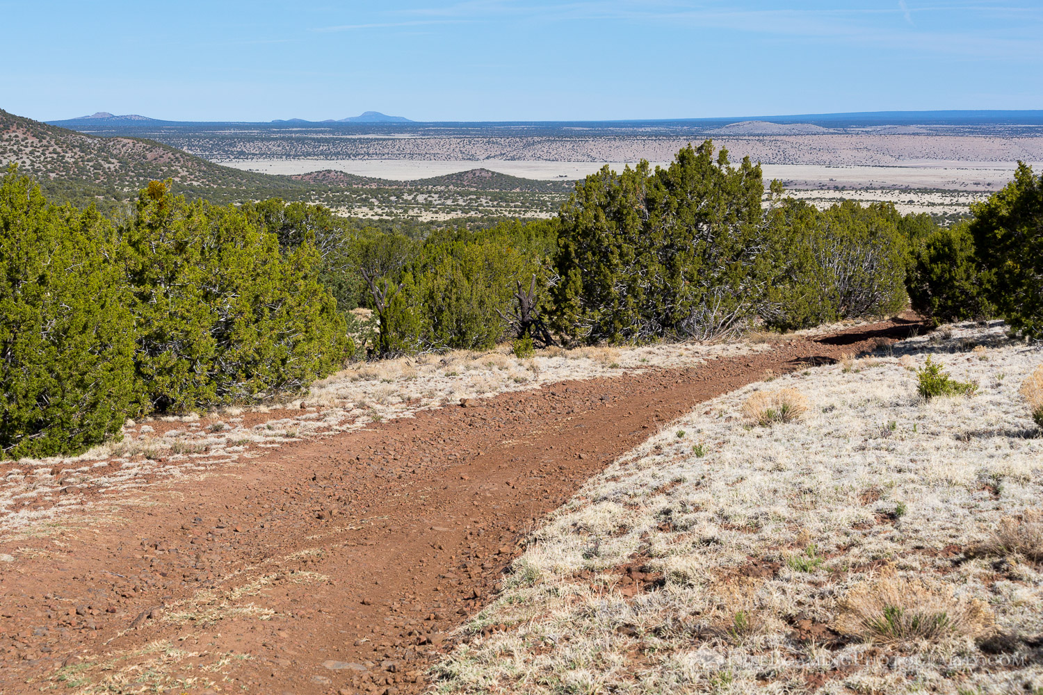 Dirt Road in Northern Arizona
