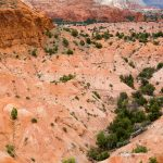 Sandstone Canyon