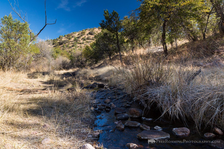Creek in Desert Grasslands