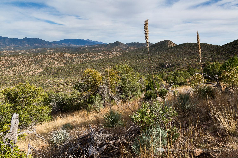High Desert Grasslands and Hills