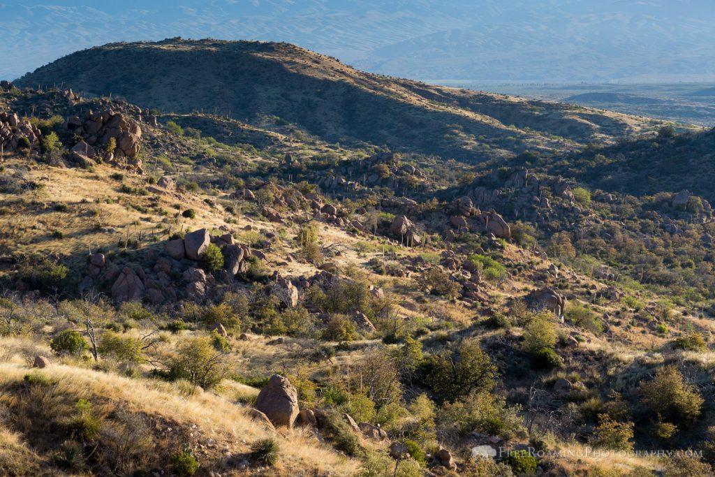 Lower Oracle Ridge