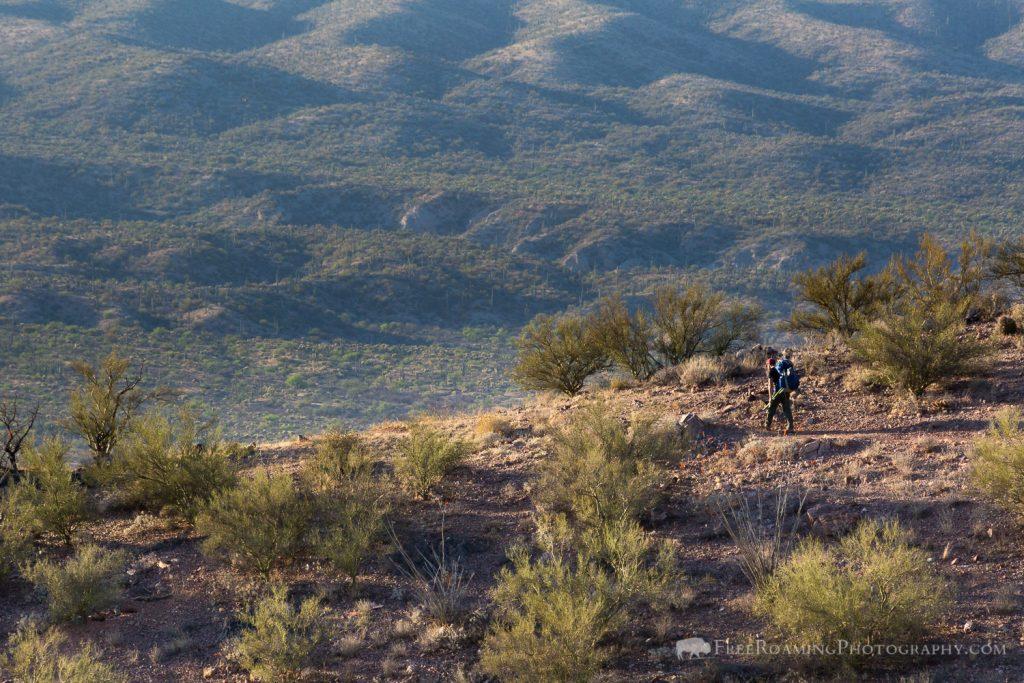 Hiker on Desert Ridge