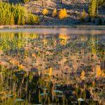 Harlequin Lake Reflections