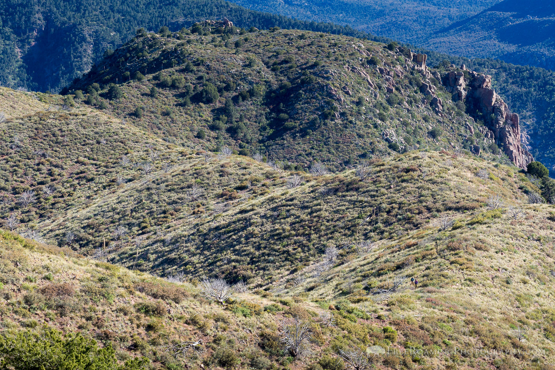 Thru-Hikers on the Arizona Trail