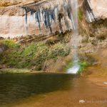 Hiker at Upper Calf Creek Falls