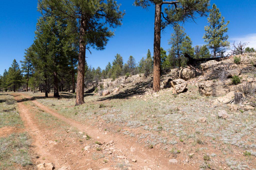Arizona Trail Passing Rocky Ledge