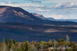Forest Below Sandstone Cliffs