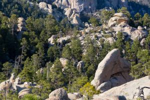 Wilderness of Rocks