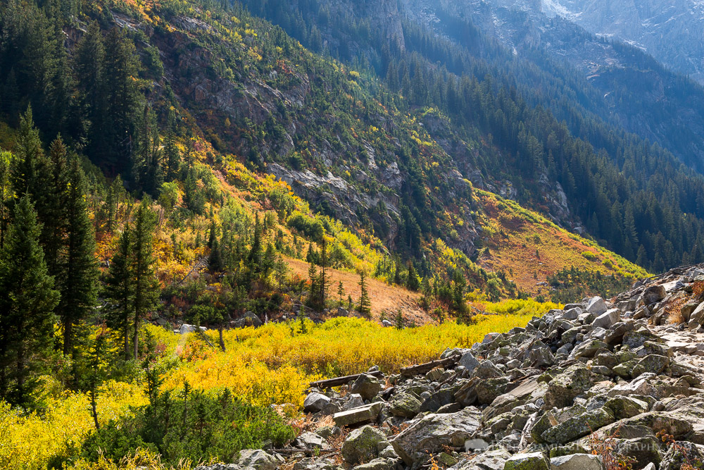 Autumn Colors in Cascade Canyon