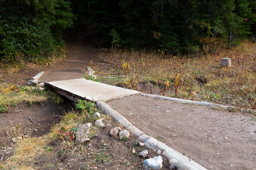 Footbridge Along Ski Lake Trail