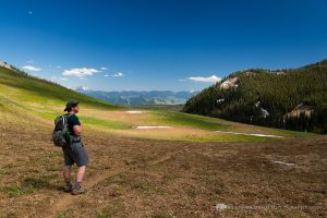 Hiker in Large Alpine Meadow