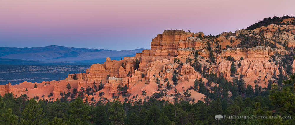 Red Canyon Hoodoos