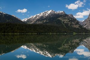 Phelps Lake Reflection