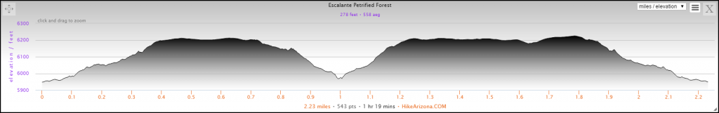 Elevation Profile for the Petrified Forest Trail