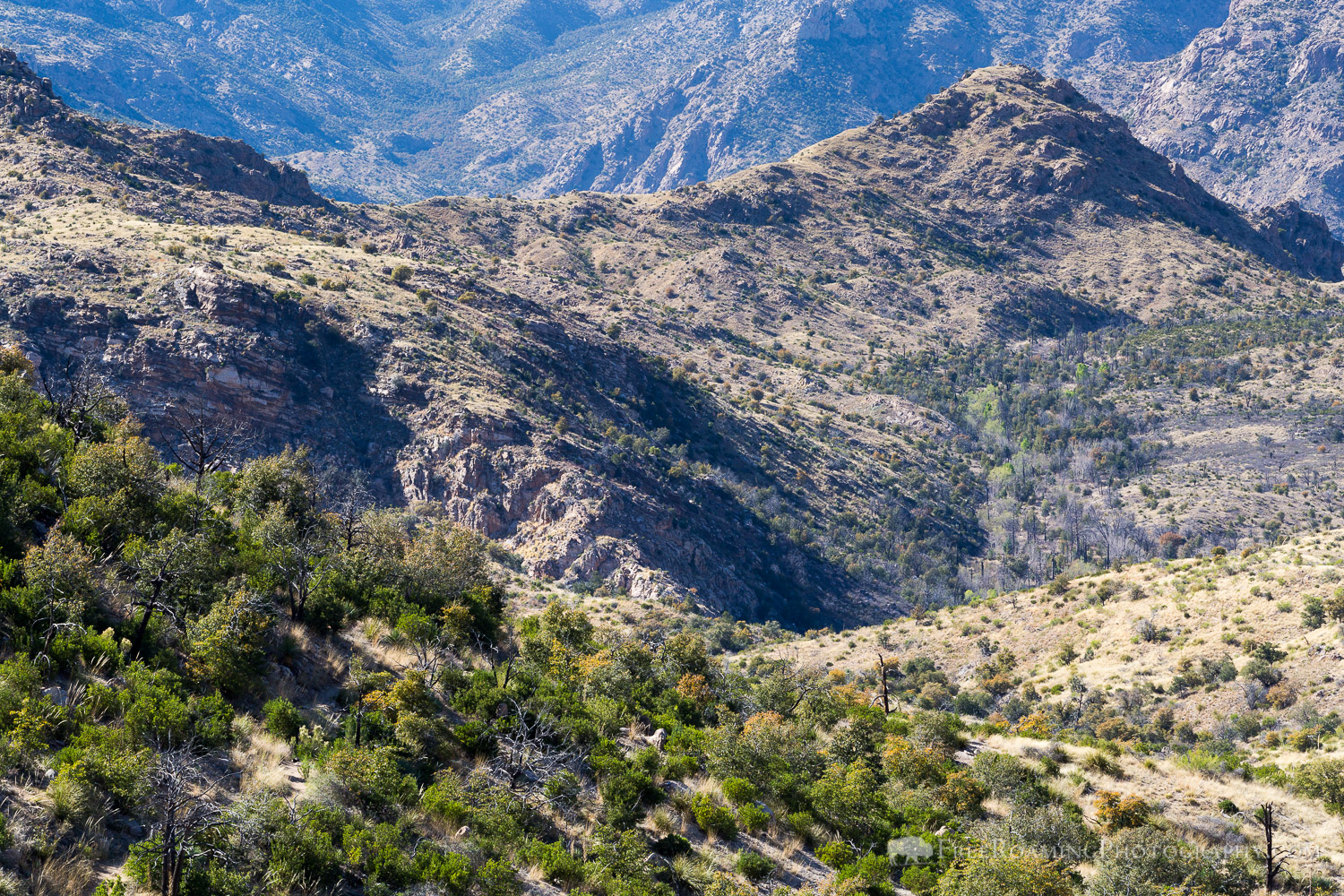 Day 12: Redington Road to Sycamore Creek