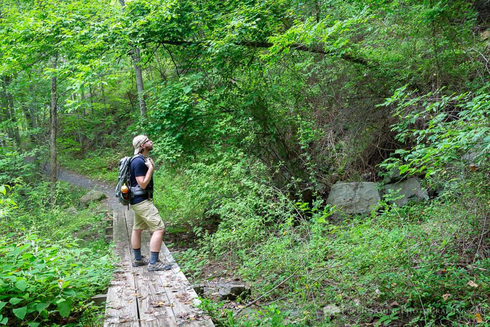 Hiker on Footbridge