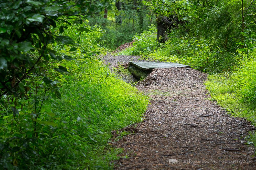 Bridle Path Crossing Footbridge