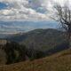 Jackson Hole Below Mount Elly